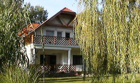 Andi-house-1
